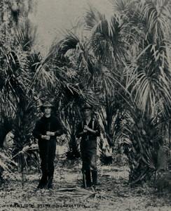 Soldiers in Cuba