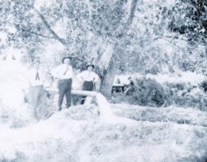 Belle Fourche Irrigation 1