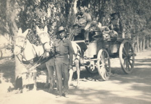 Jack A WWll horses and cart